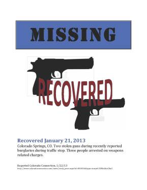 Missing Gun Poster-13 copy