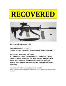 Missing Gun Poster-17 copy
